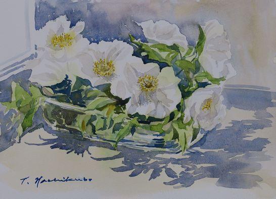 窓辺の白いバラ 540pix